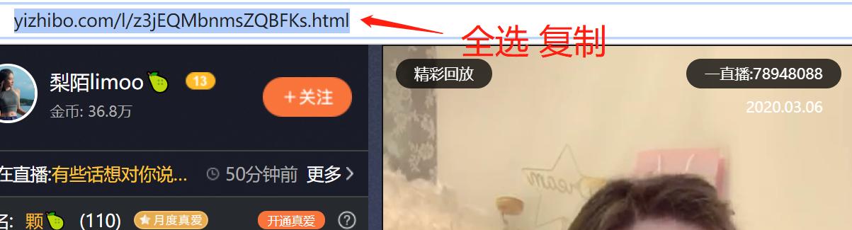 复制一直播视频回放地址.png